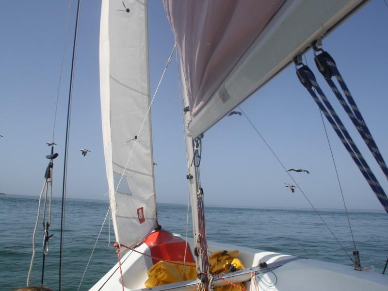 Sail Pass